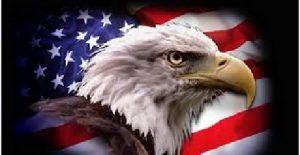 Bild american eagle